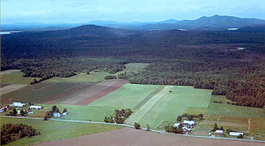Aerial View of Tucker Farms